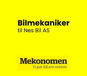 nes-bil-va.png